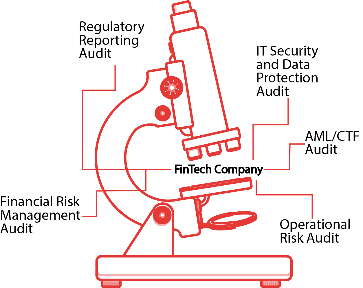 Regulatory Compliance Audit for Financial Institutions
